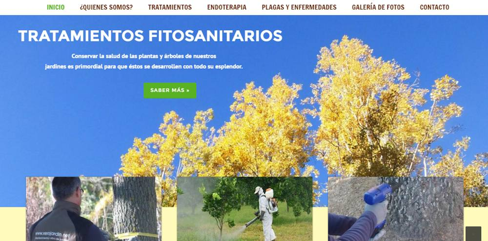 www.endoterapiaenmadrid.es